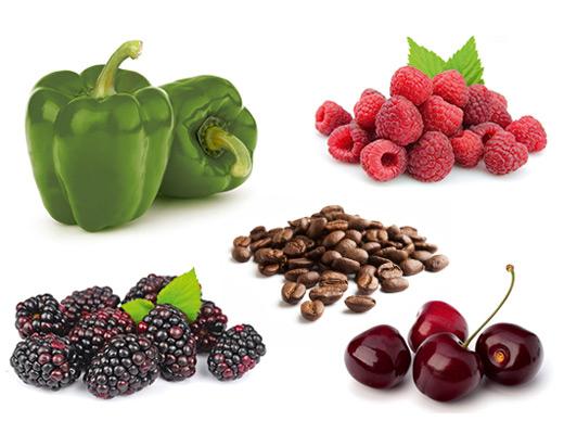 Die typischen Aromen der Rebsorte Domina, Brombeere, Kirsche, grüne Paprika und Kaffee.