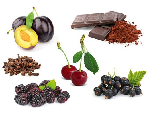 Die typischen Aromen der Rebsorte Dornfelder, Sauerkirsche, Bitterschokolade, Nelke und Cassis.
