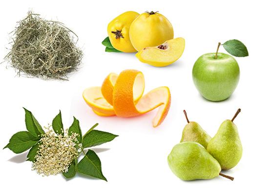 Die typischen Aromen der Rebsorte Silvaner, Apfel, Orange, Birne, Holunder, Quitte und Heu.