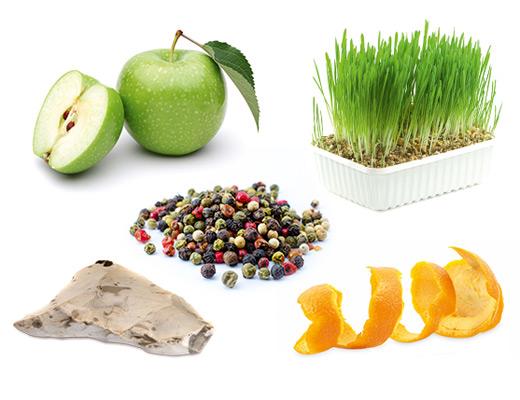 Die typischen Aromen der Rebsorte grüner Veltliner sind Apfel, Orangenschale, Feuerstein, Pfeffer und frisches Gras.