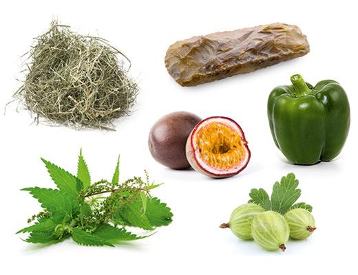 Die typischen Aromen der Rebsorte Sauvignon blanc sind Brennessel, grüne Paprika, Heu, Maracuja, Stachelbeere und Feuerstein.