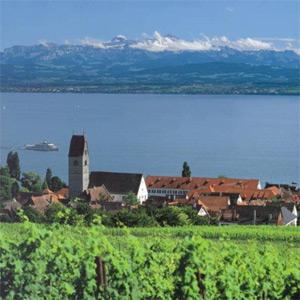 Am wunderschönen Bodensee liegt die Winzergenossenschaft Hagnau