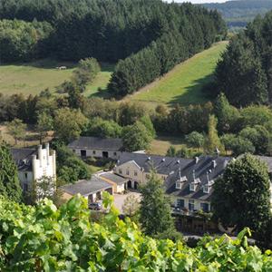 Der Karthäuserhof liegt prächtig zu Fuße seiner Weinlagen