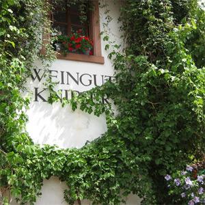 eine verwunsche Hausfassade des Weingut Knipser